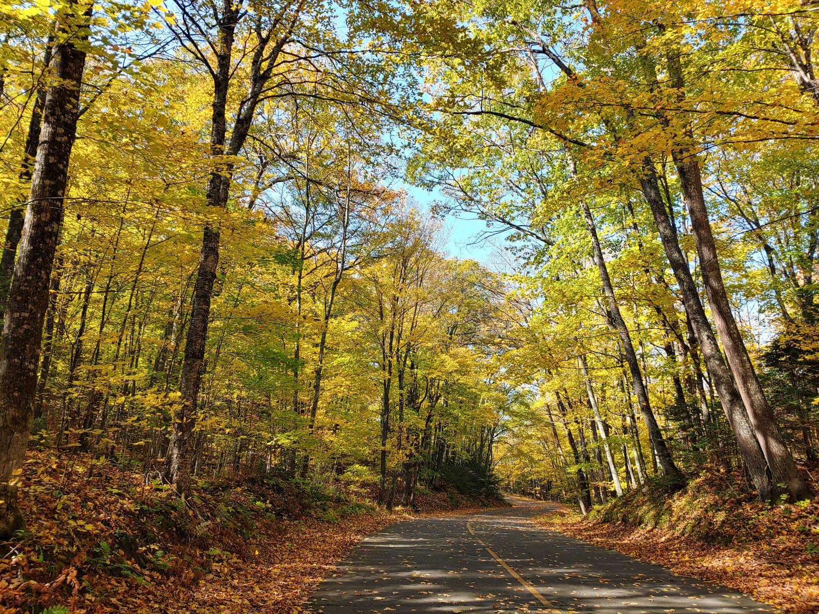 Northern Wisconsin Fall Color Tours